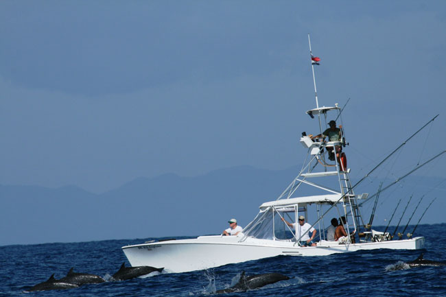 Welcome to the deep sea fishing for Deep sea fishing costa rica